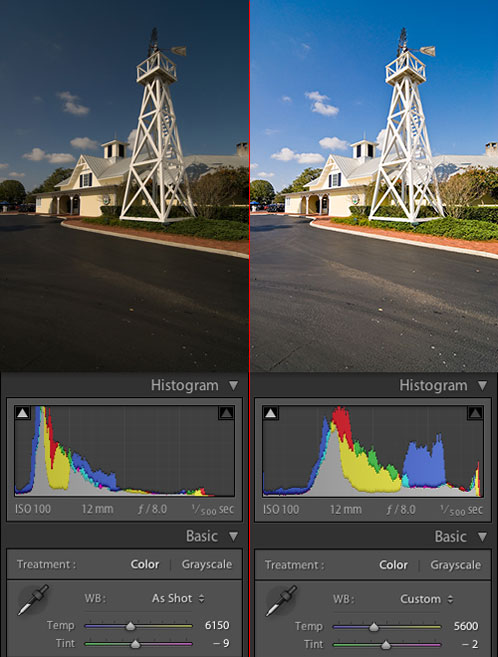 RAW Processing: Before and After